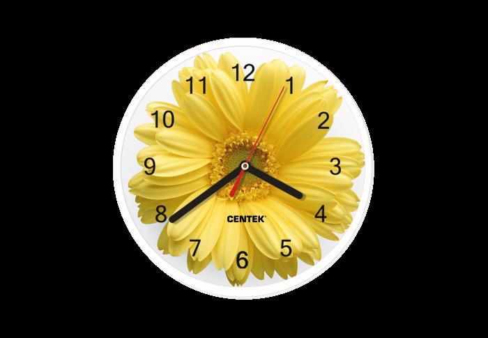 Часы настенные CENTEK СТ-7102, гербера